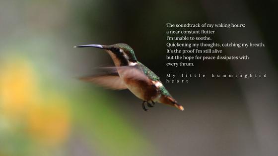 hummingbird heart anxiety heart palpitations