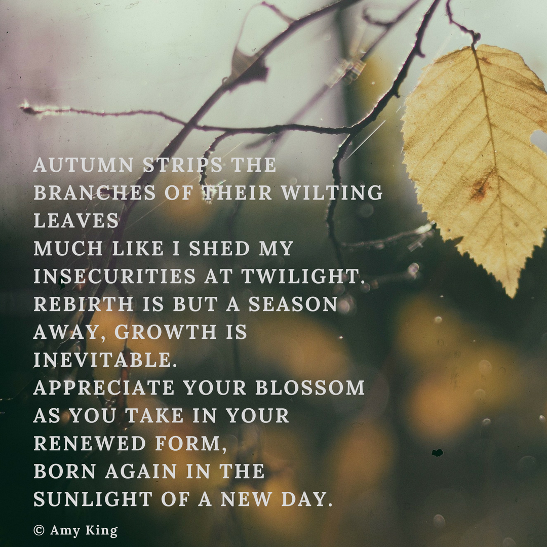 autumn leaves poem amy king